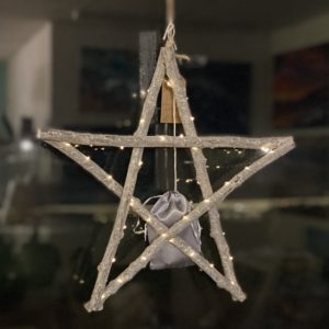 Driftwood LED Star